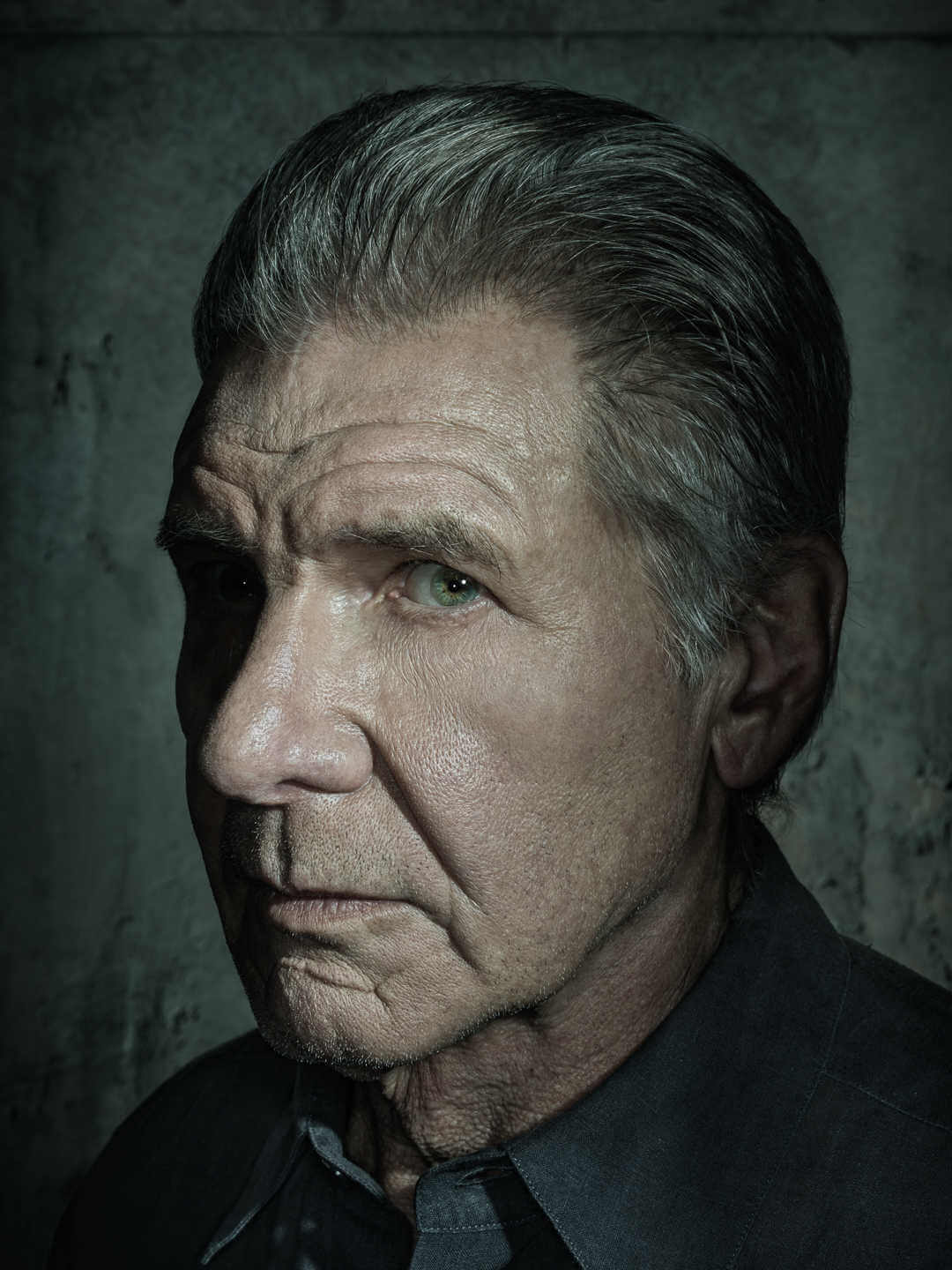 RETRATO DE HARRISON FORD