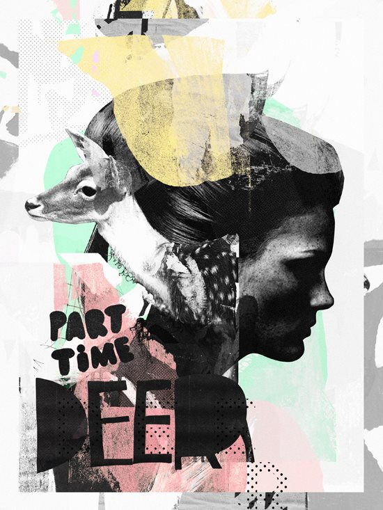 Raphael vicenzi collages and illustrations 0
