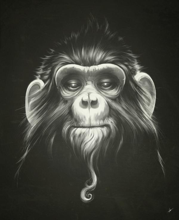 Ilustracion de un mono
