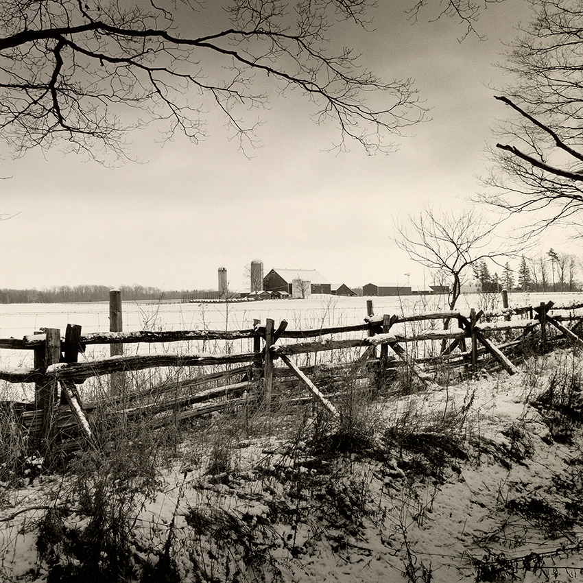 parque-de-invierno-aromas-de-la-luz-fotografia-oldskull-1