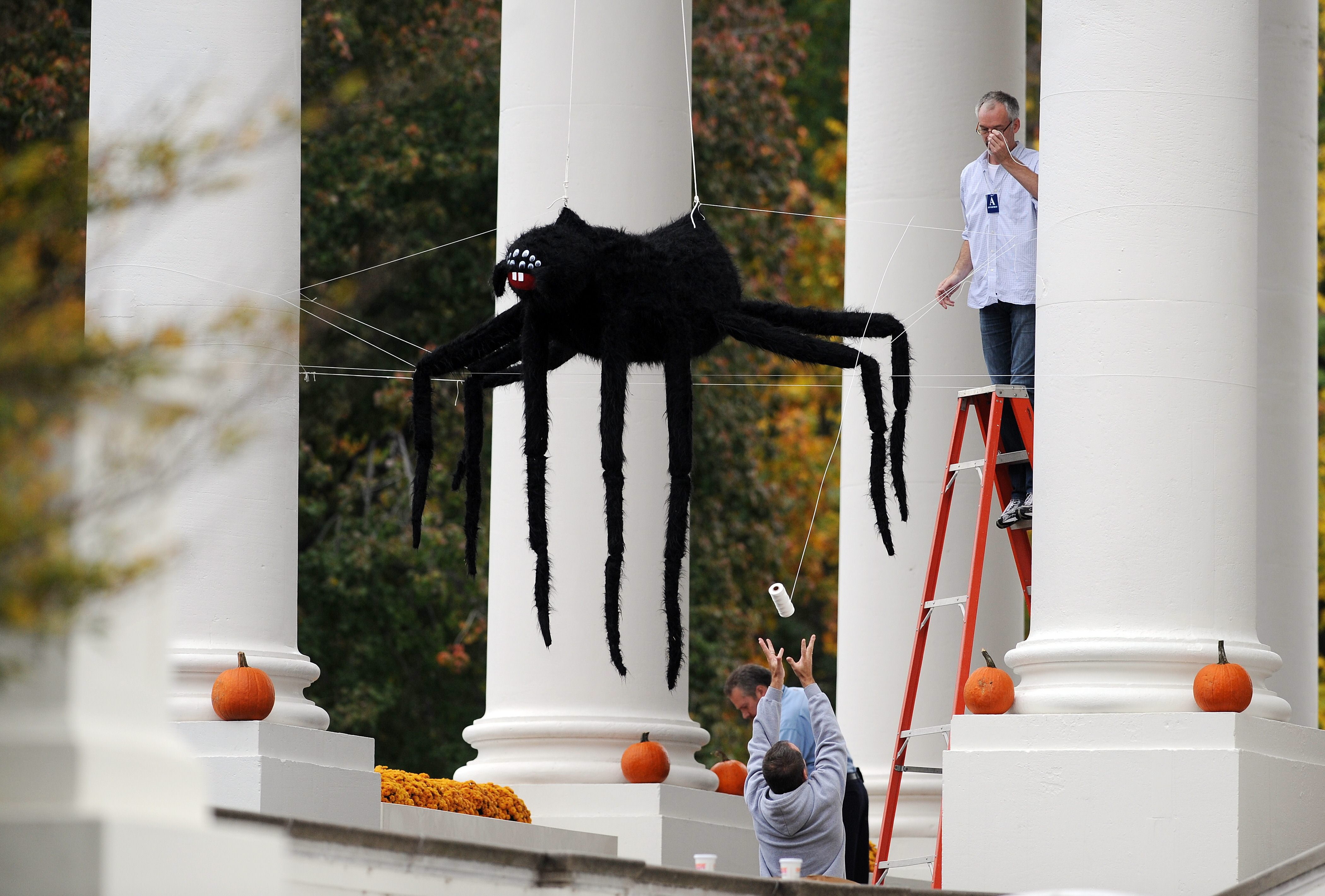 Workers install Halloween decorations at the North Portico of the Whi