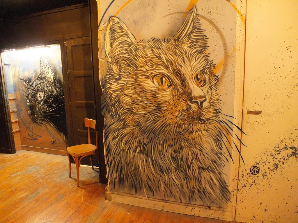 c215-street-art-oldskull-7