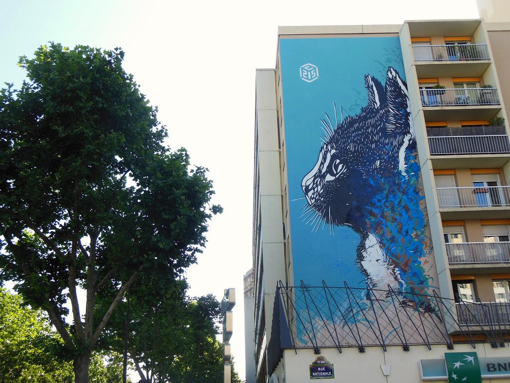 c215-street-art-oldskull-9