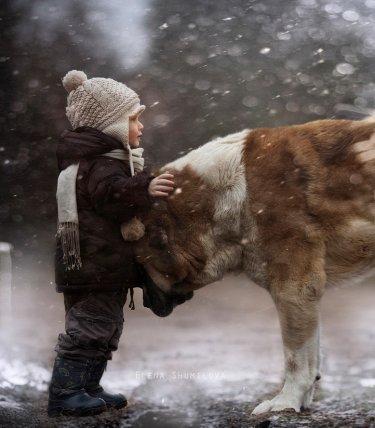 niño con un perro bajo la nieve