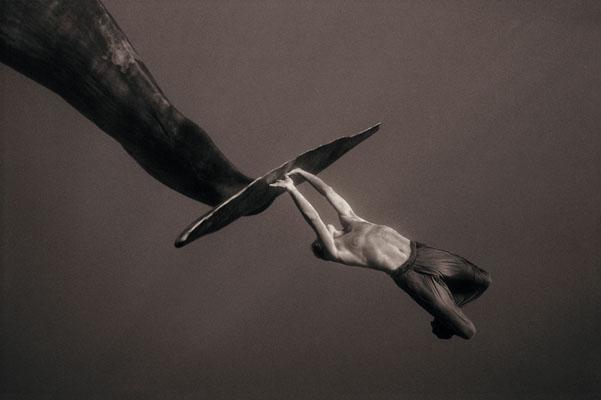 GregoryColbert-foto-oldskull-10