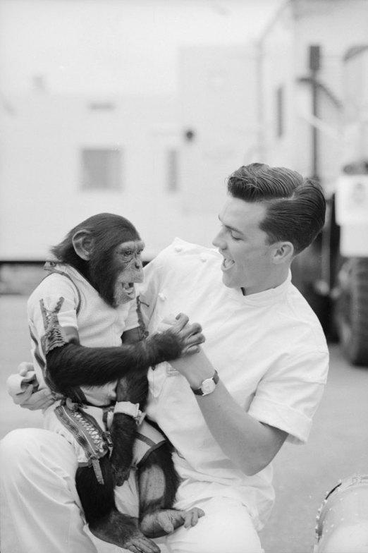 Ham_primer_chimpancé_astronauta-fotografia-oldskull-21