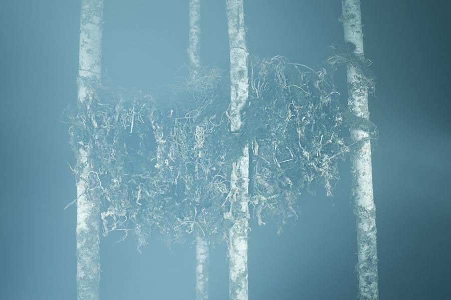 troymoth-foto-oldskull-22