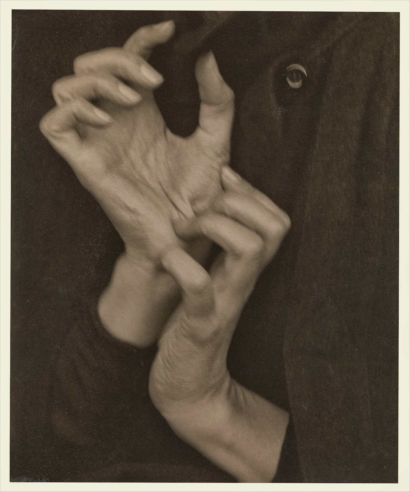 Georgia OKeeffe-Hands by Alfred Stieglitz 8
