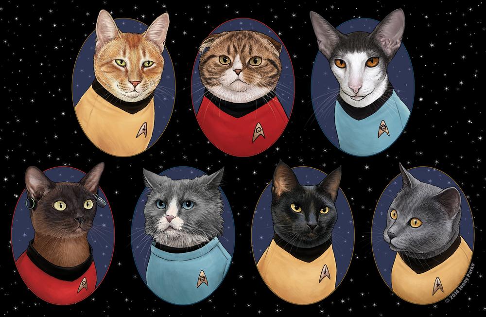 StarTrek-gatos-oldskull