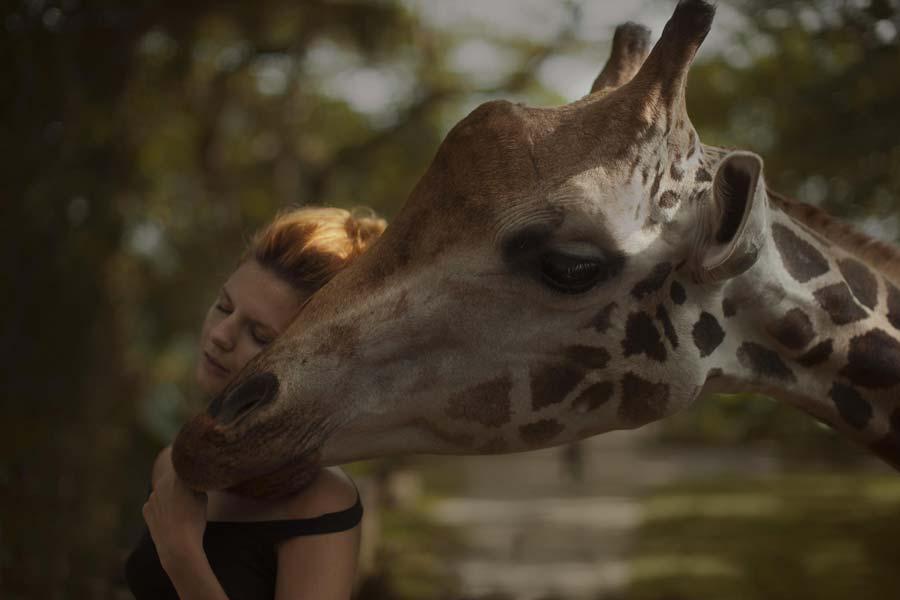 katerina-plotnikova-photography-animals-6