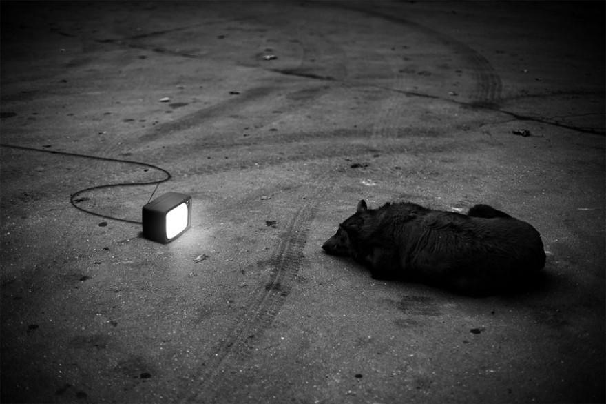 foto_mas_surrealistas-fotografia-oldskull-11