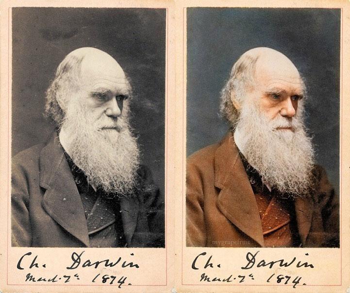 charles darwin 1874