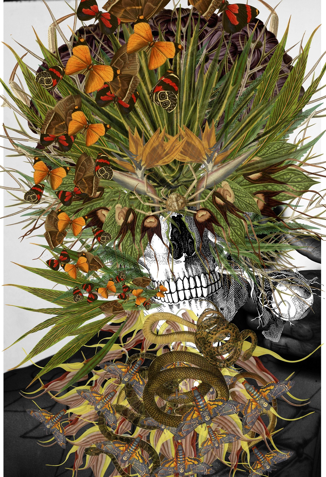 collage Bedelgeuse art calavera serpientes y flores