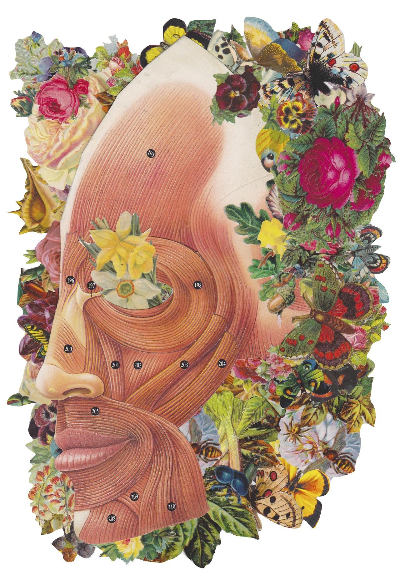 collage Bedelgeuse cara de persona con flores