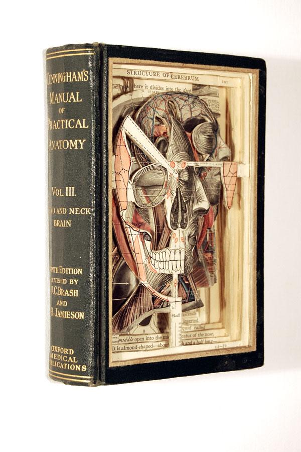 BrianDettmer libro manualidades 0-1