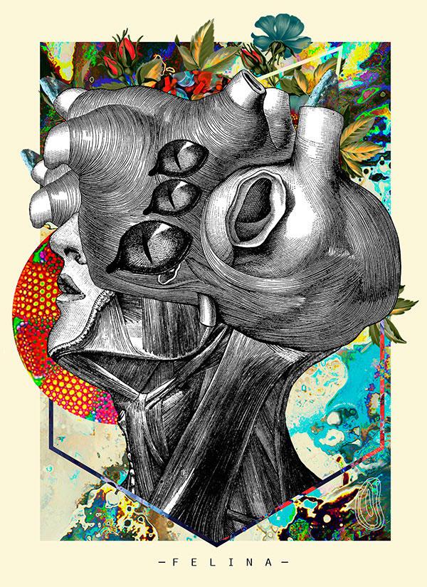 Collage de cara humana mezclada con organos humanos por el artista David Fallow