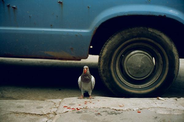 Sidewalks-fotografia-oldskull-02