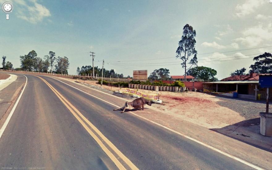 GoogleStreetView-fotografia-oldskull-26