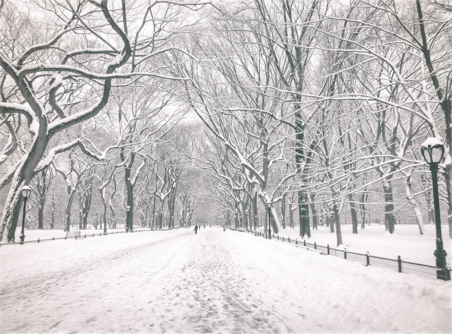 NYCWinter-fotografia-oldskull-02