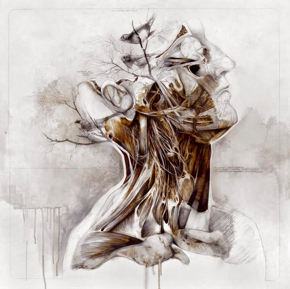 nunzio-paci-human-illustration 1