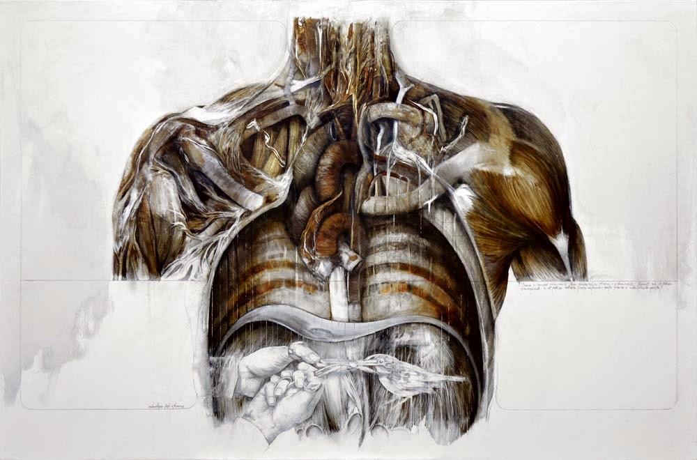 nunzio-paci-human-illustration 6