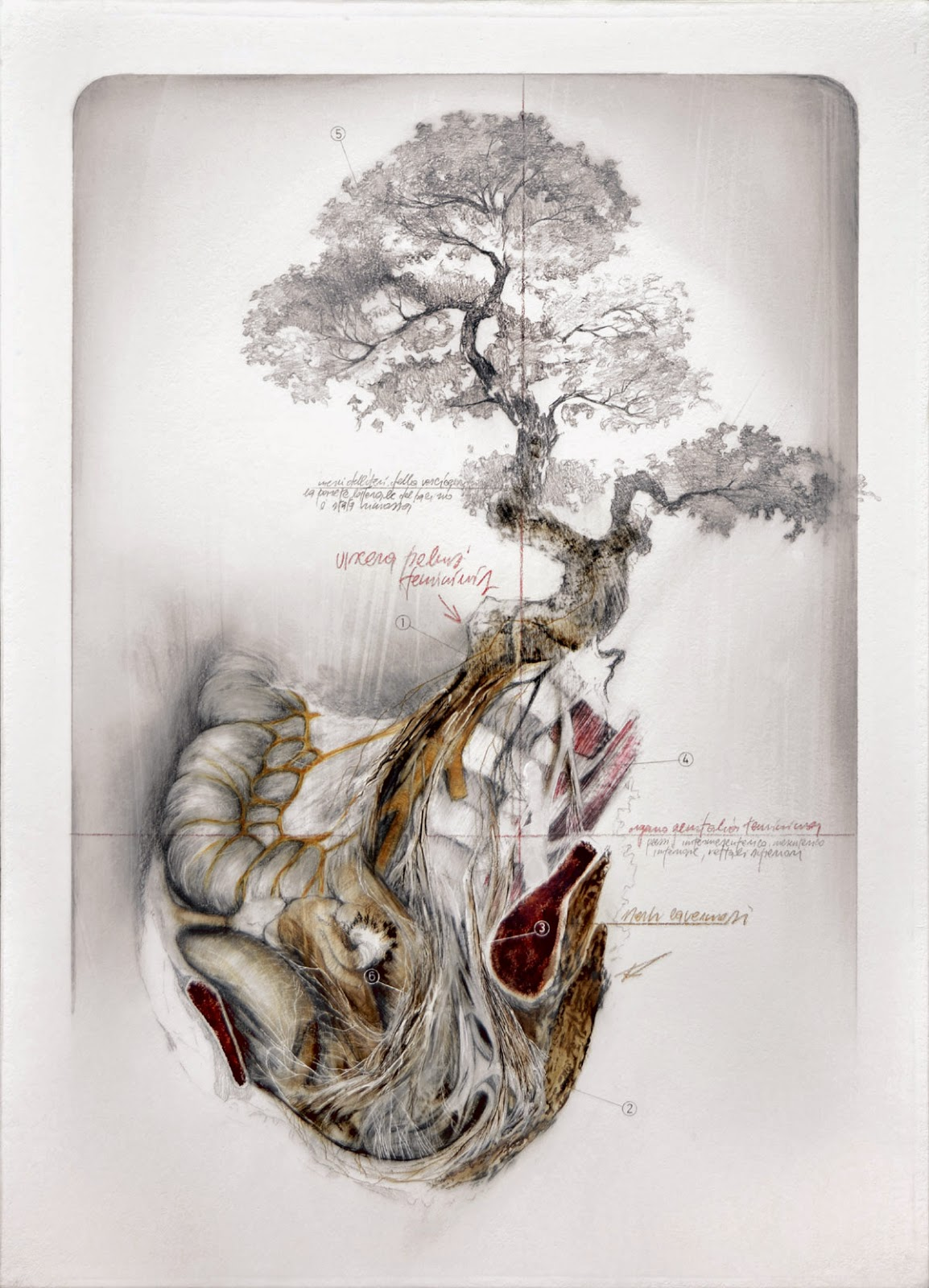 nunzio-paci-human-illustration 8