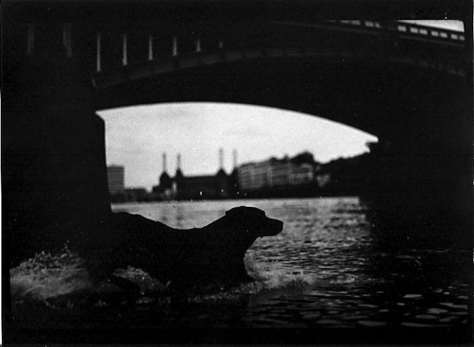 Eternal_London-fotografia-oldskull-09