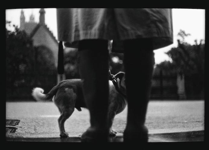 Eternal_London-fotografia-oldskull-15