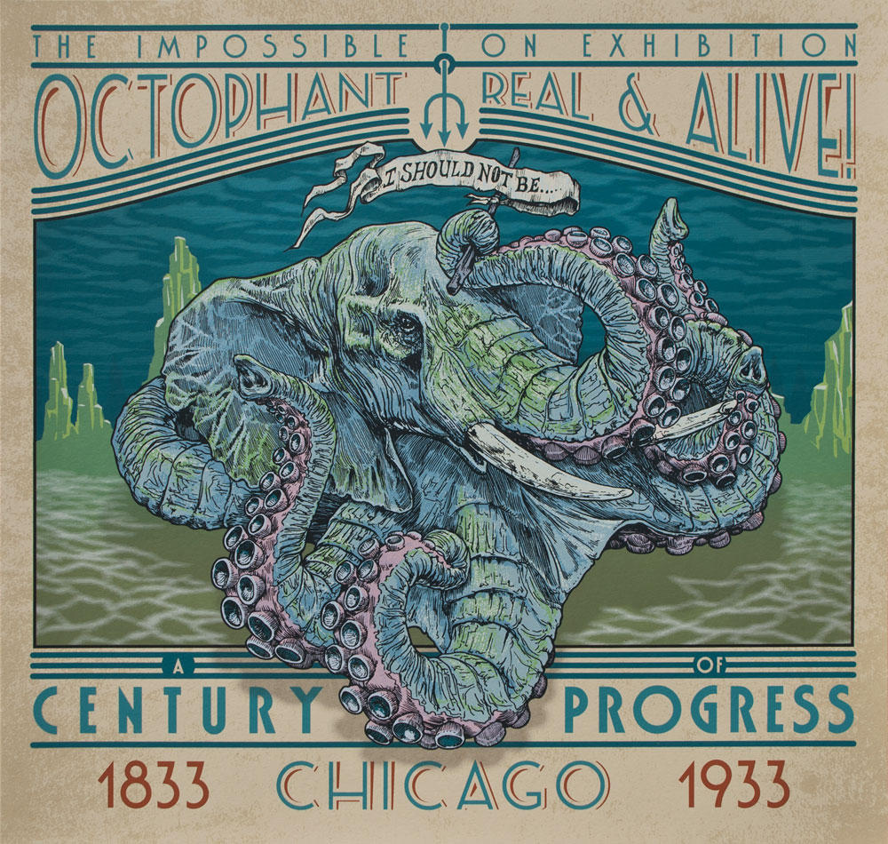 Octophat illustrations 4