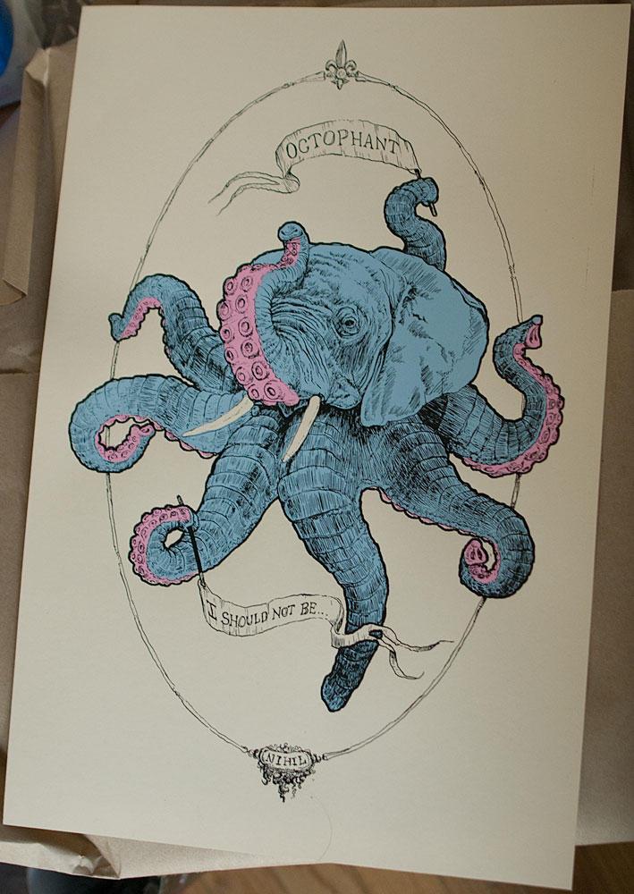 Octophat illustrations 7