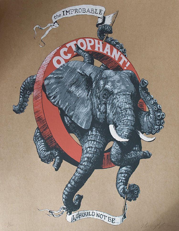 Octophat illustrations 8