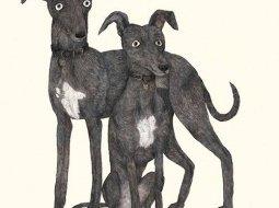 Ilustracion de perros galgo