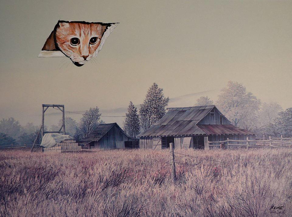 Cuadro de campo con un gato