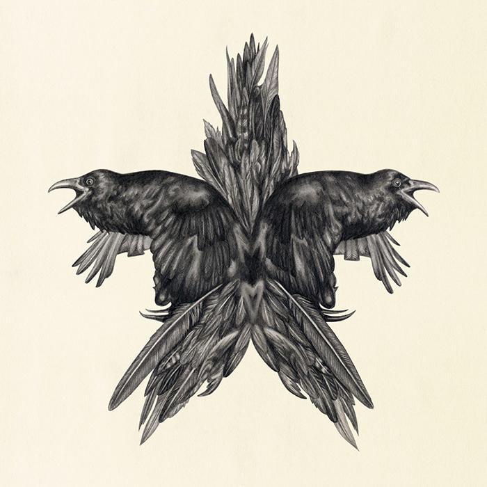 Lauren mortimer illustration 6