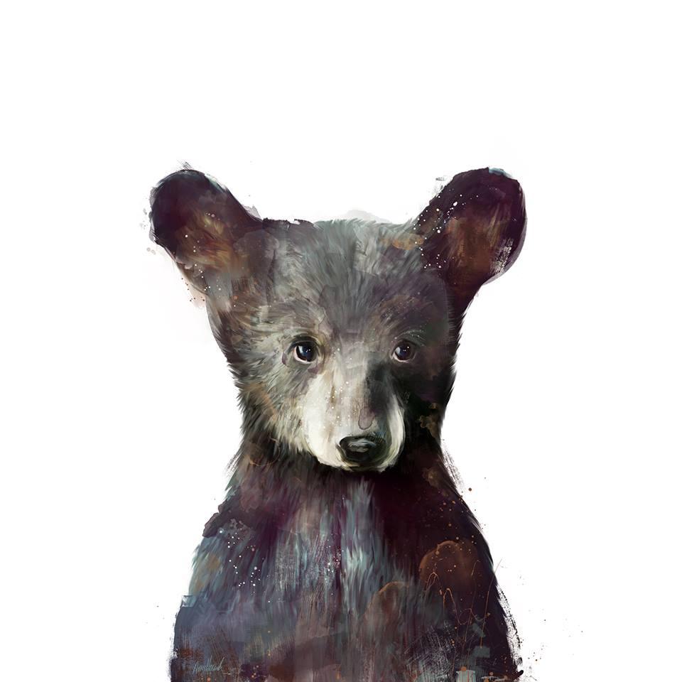 amy hamilton animals illustration 2