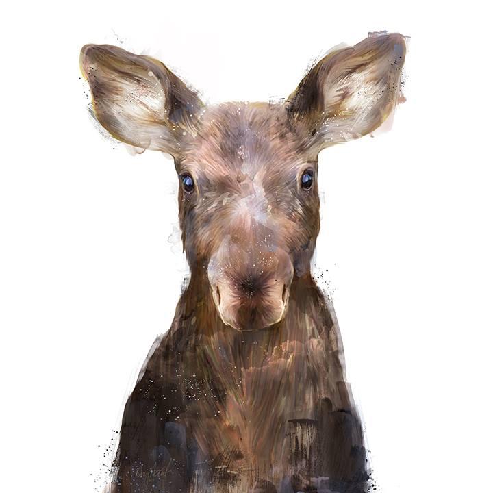 amy hamilton animals illustration 5