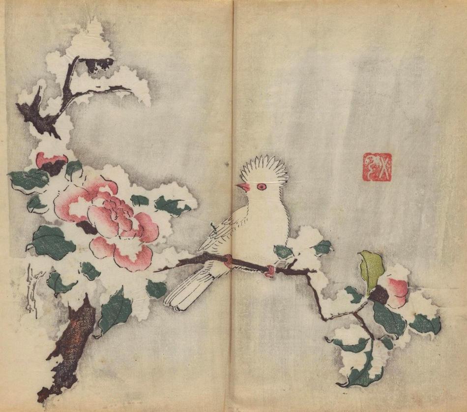 Manual de caligrafía y pintura del siglo XVII pajaro