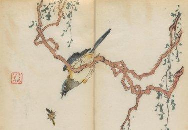 imagen interior del libro a color impreso más antiguo del mundo