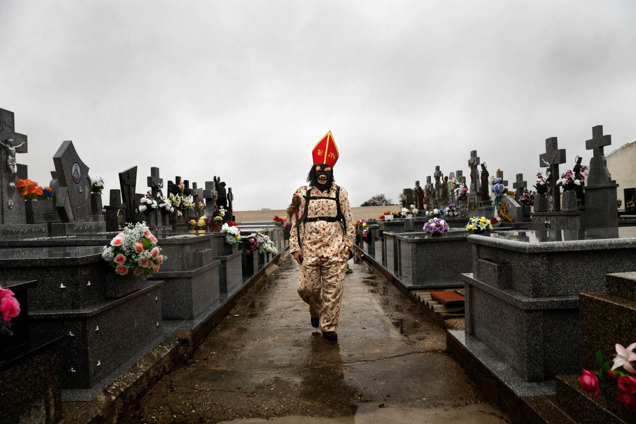 """In this Feb. 2, 2015 picture, a member of the Endiablada brotherhood walk trough the cemetery after paying respect to their deceased fellow believers and relatives during the 'Endiablada' traditional festival in Almonacid Del Marquesado, Spain. During the Endiablada, or 'The Brotherhood of the Devils' believers dressed in colorful costumes, wearing a red mitre and big copper cowbells hanging tied to their waists make lot of noise as they walk, dance or jump around streets if the tiny village, and during its procession, in front of the a sculpture depicting the Virgin or the Saint. In the """"Endiablada"""", is a tradition that has survived through the centuries in honor of the Candelaria's Virgin and San Blas. Candelaria, refers to the Jewish protocol, in which the Virgin Mary had to present her new baby, Jesus, to the temple, forty days after his birth. In the Catholic teachings, it is said that this action caused the Virgin Mary great anxiety and shame because of the public knowledge of the unusual circumstances of Jesus's birth. La Endiablada brotherhood with their noisy bells are said to be trying to divert the public's attention so that the Virgin Mary could fulfill her obligation and avoid suffering such embarrassment and shame. The connection of the dancing 'diablos' to San Blas has another explanation, according to a local legend shepherds found an image of San Blas, a miraculous event took place and they understood to be a sign that the saint was meant to stay in Almonacid. As a sign of their joy the shepherds rang the bells of their cattle so giving La Endiablada their famous cowbells. (AP Photo/Daniel Ochoa de Olza)"""