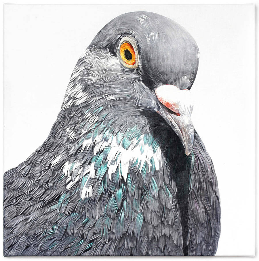 Adele Renault Paints Incredibly Realistic Pigeon (1)