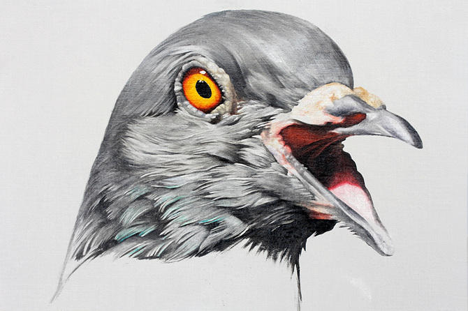 Adele Renault Paints Incredibly Realistic Pigeon (4-1)