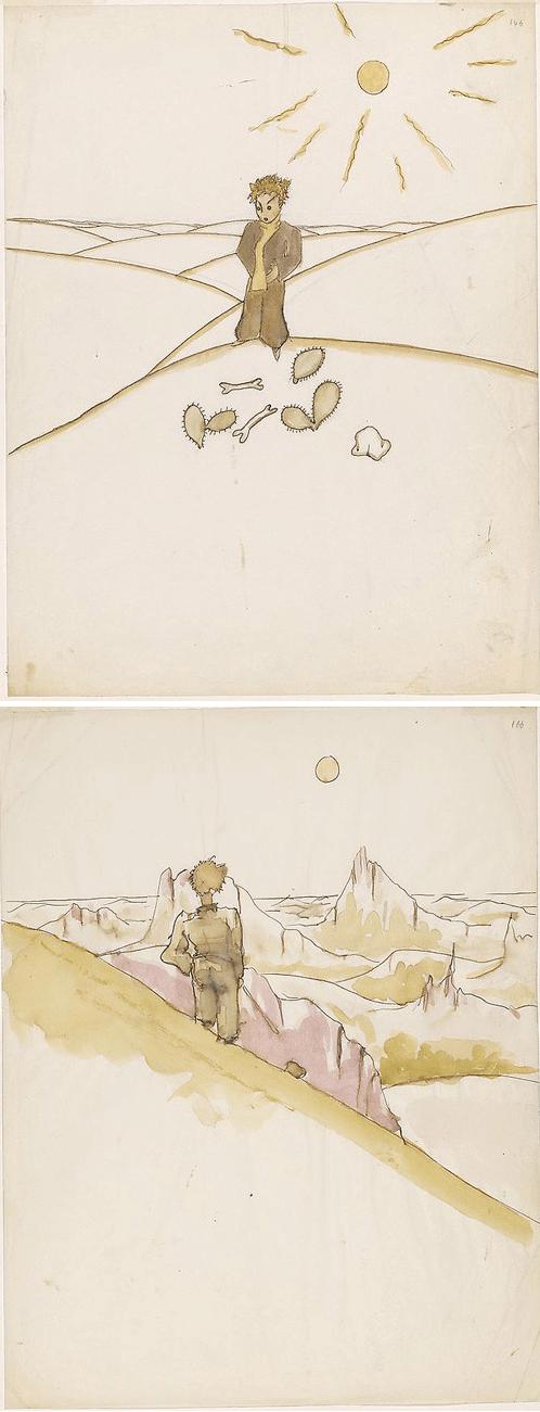 el principito dibujos ilustraciones 3