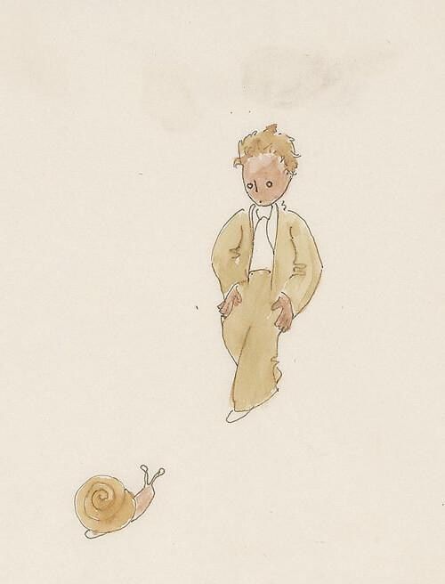 el principito dibujos ilustraciones 6