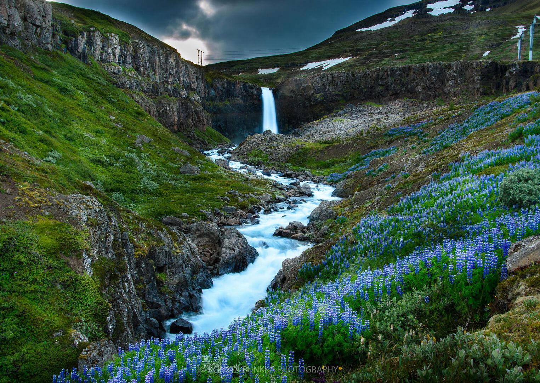 fotografía de un rio