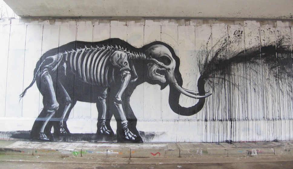 roa street art elephant wall