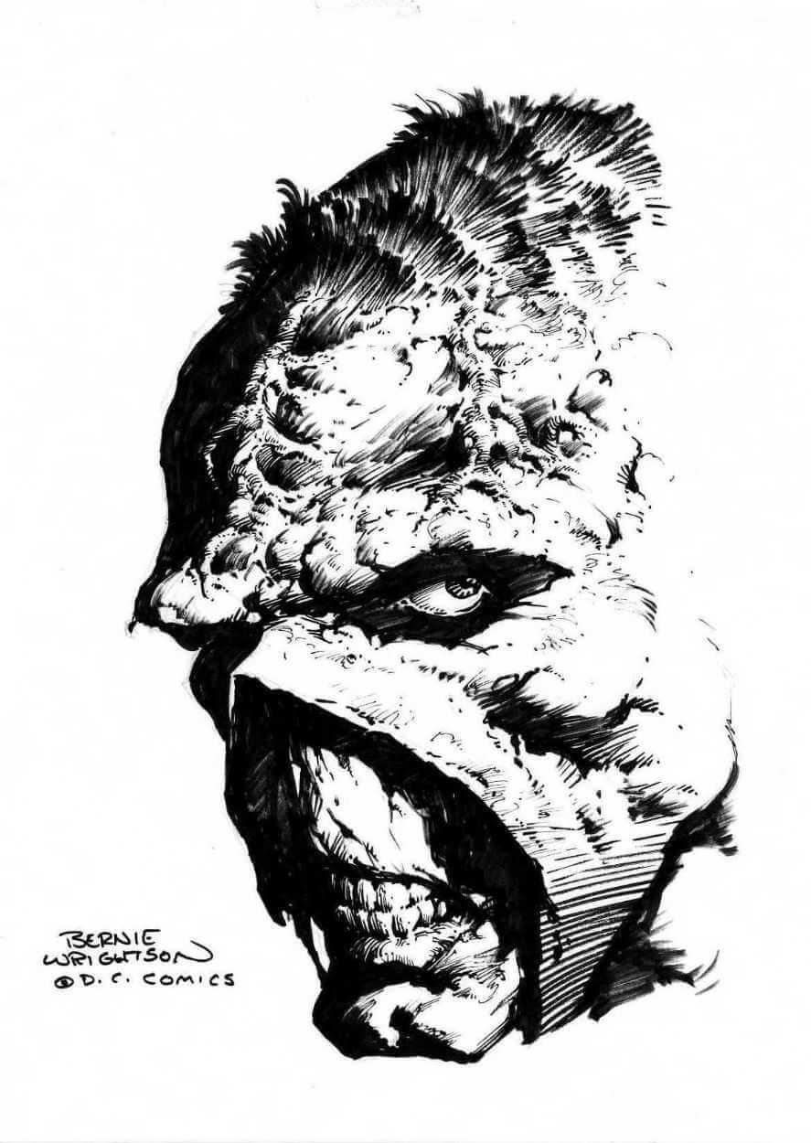 detalle de la la cara de la cosa del pantano ilustrada por Bernie Wrightson para dc comics