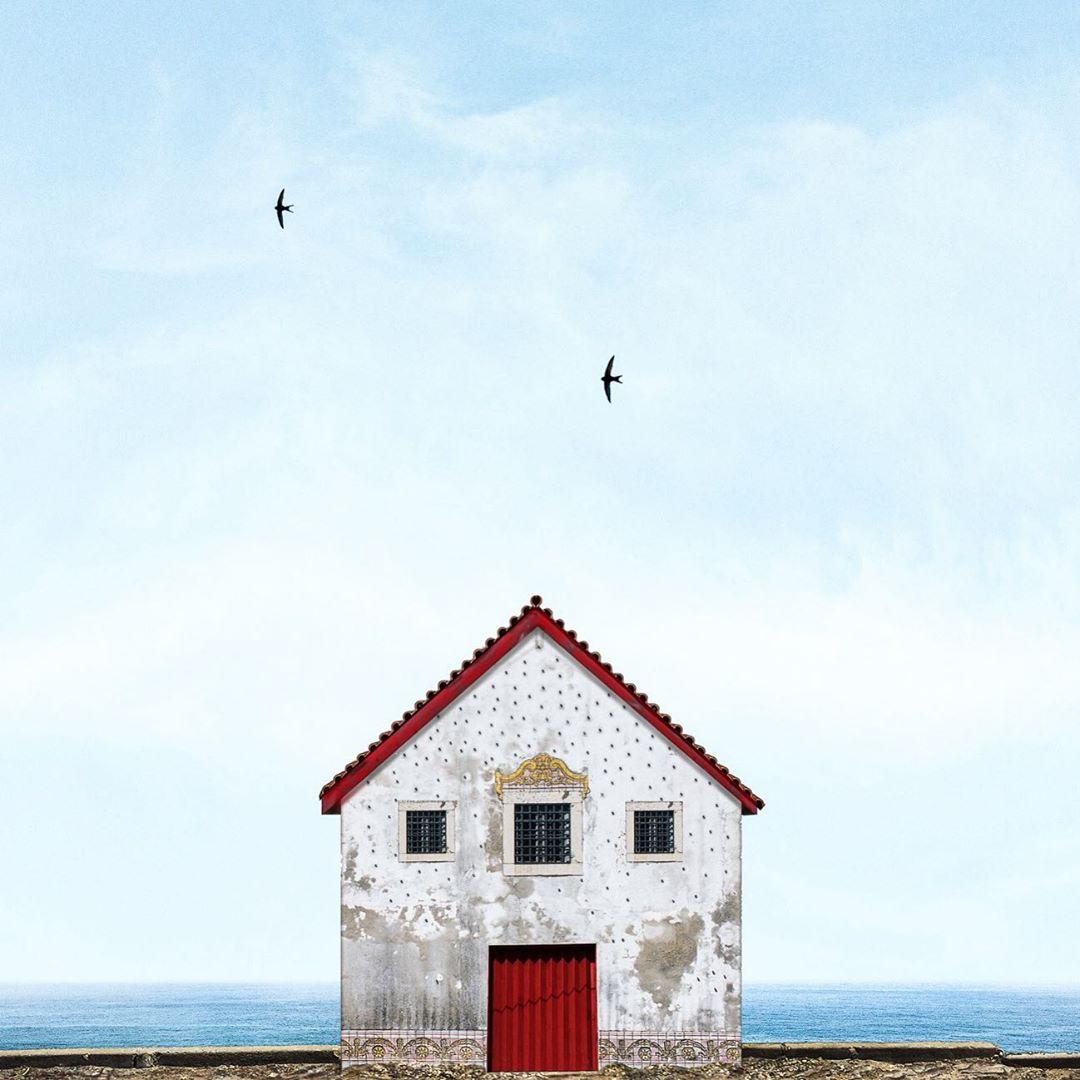casa solitaria con pájaros