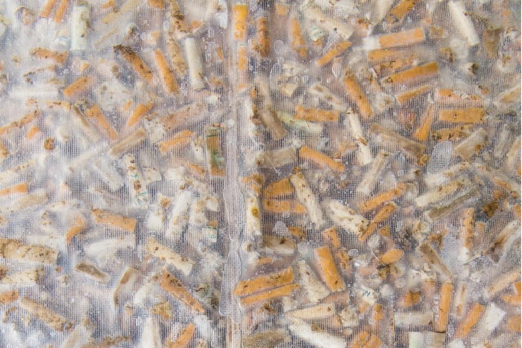 colillas de cigarrillo