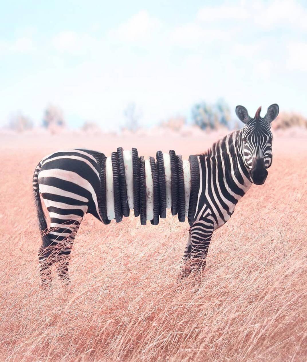 zebra oreo Ronald Ong