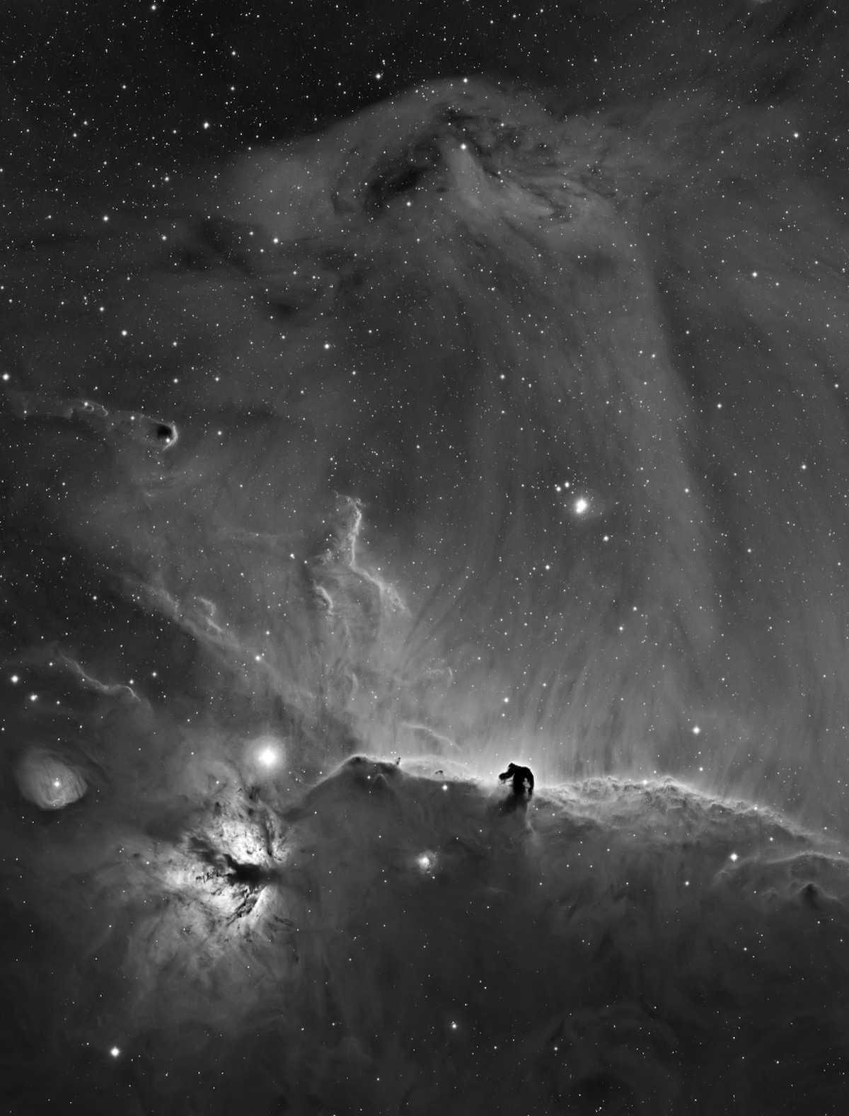 """Fotografía astronómica A Horsehead Curtain Call"""" por Bob Franke (Estados Unidos)"""